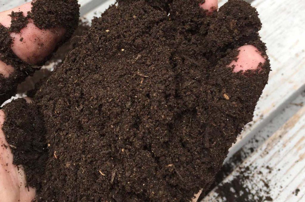 humus de lombriz suelos contaminados