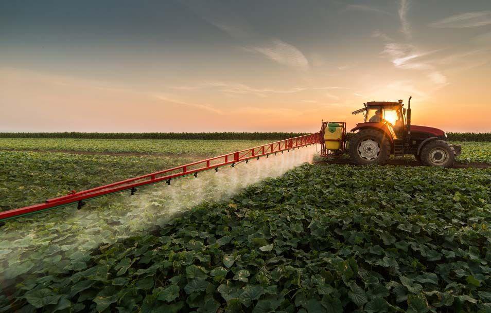 el cultivo indiscriminado afecta negativamente a las lombrices