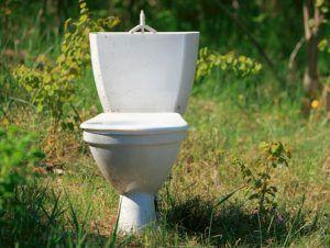 hacer compost con excrementos humanos