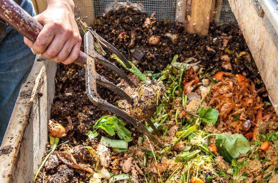 Ventajas Y Desventajas Del Pre Compostaje En La Alimentación De Las Lombrices Lombritec