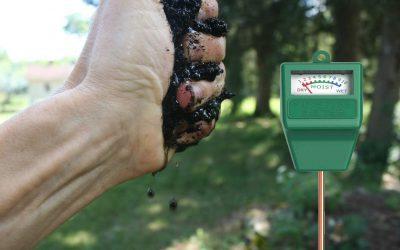 ¿Cuál es la humedad adecuada en un compostador de lombrices?